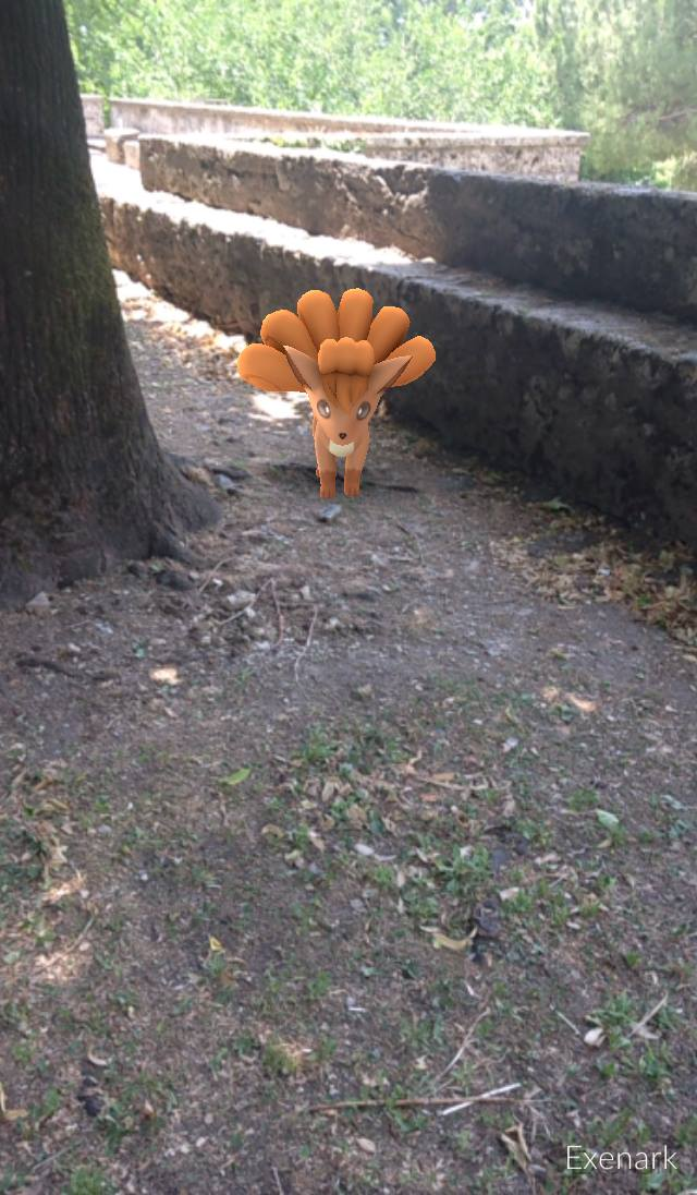 vulpix pokemon go a terni in un parco