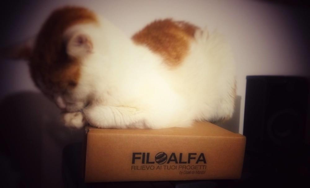Filo Alfa Geofelix Stampa 3D