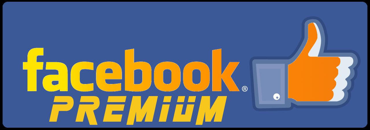 Facebook premium arrivano le statistiche sui profili