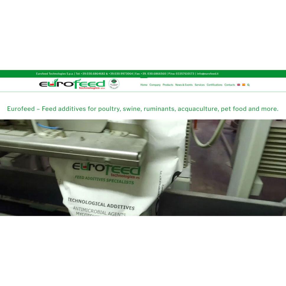 geofelix-creazione-siti-web-marketing-pmi-piccole-medie-aziende-liberi-professionisti-articoli-pavia-milano-design-data-driven-10