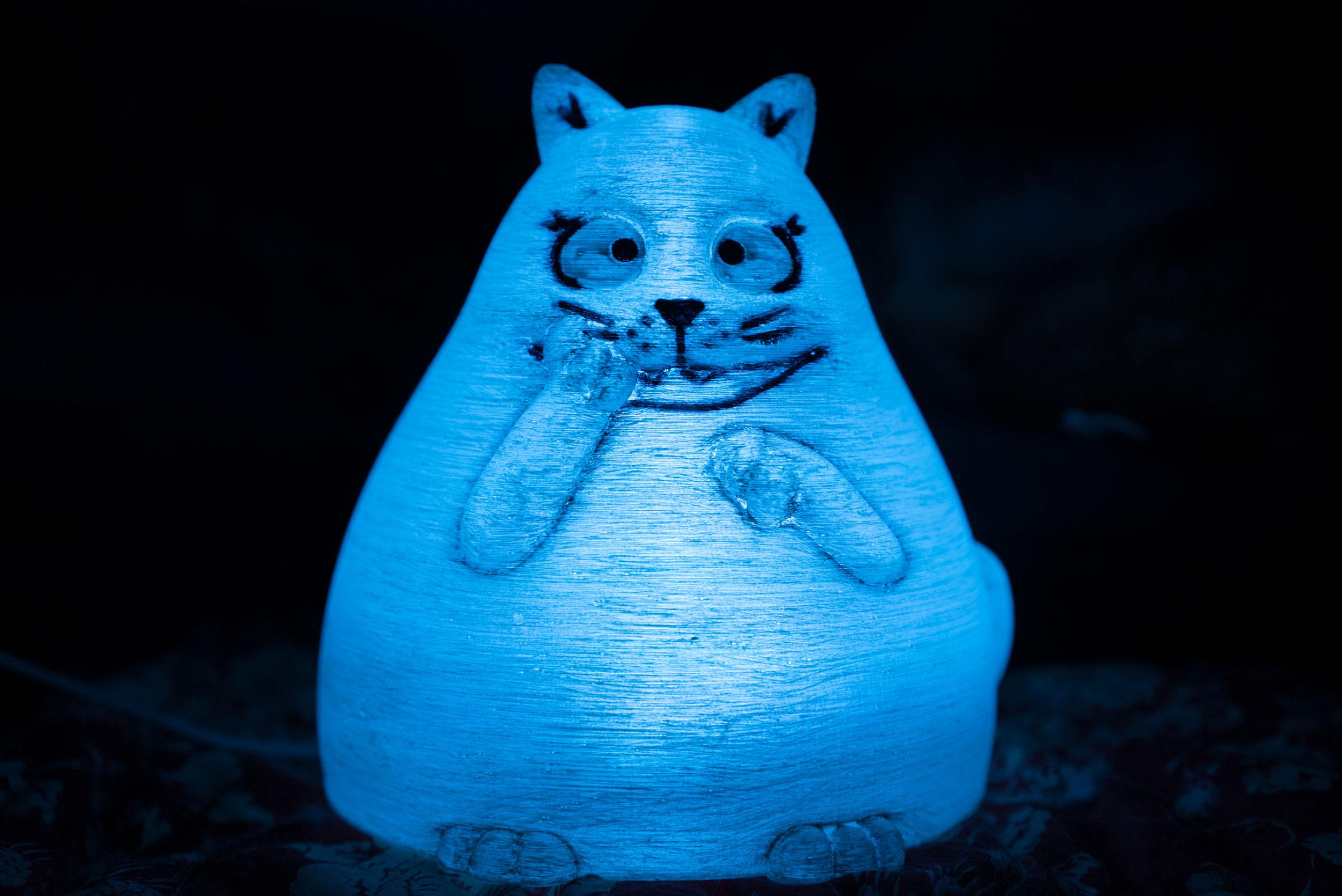 Gatto-Panzone-Luce-Azzurra