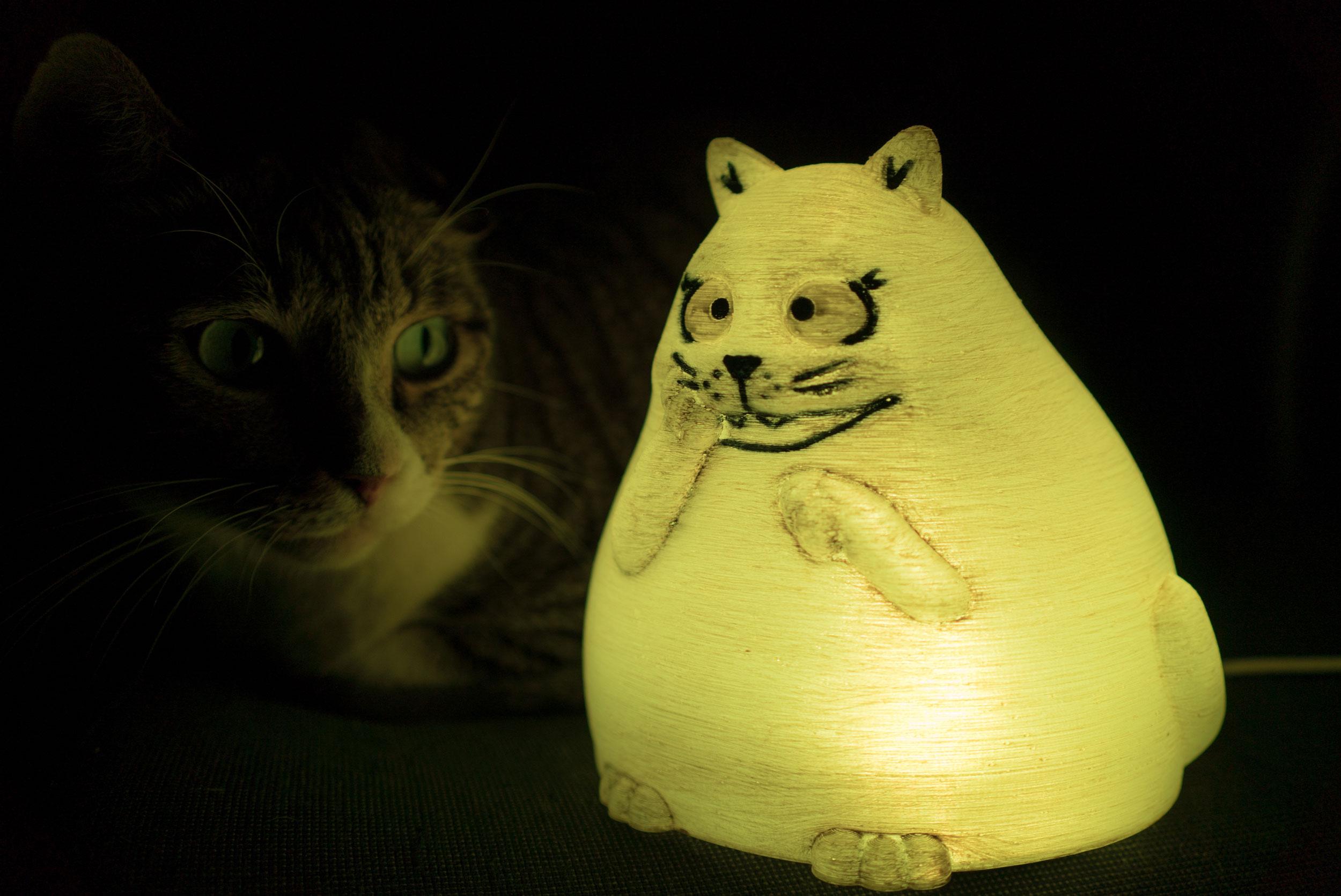 Sogliola-osserva-Gatto-Panzone