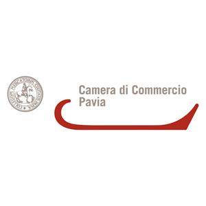 branding-seo-marketing-creazione-siti-web-pavia-milano-design-progettazione-grafica-geofelix-17